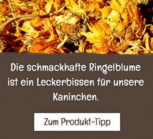 Noesenberger_Produkttipp_Ringelblume